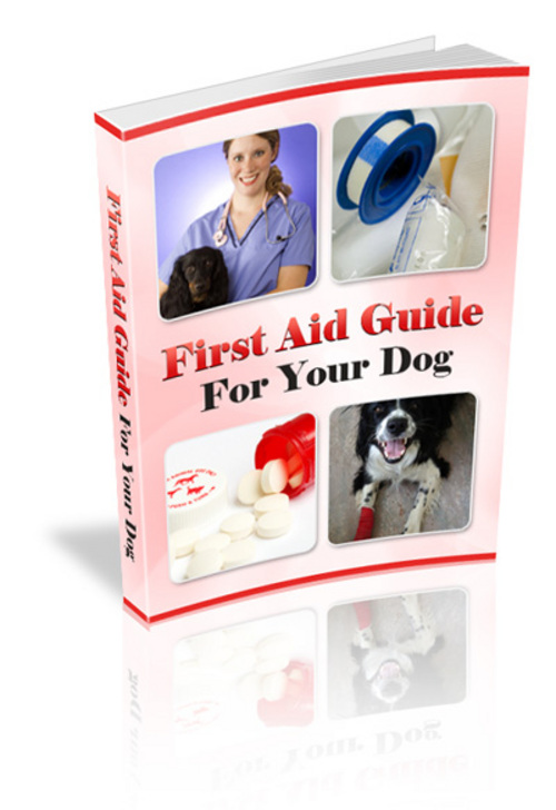 Product picture First Aid Guide For Your Dog